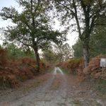 Observatoire-avifaune-bascons-pays-grenadois-sentier