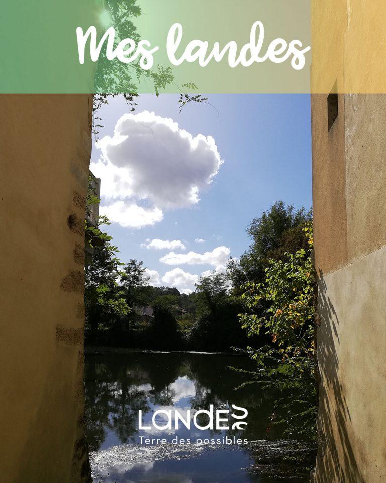#MesLandes - Grenade sur l'Adour